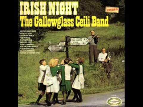 The Gallowglass Ceili Band - Irish Night