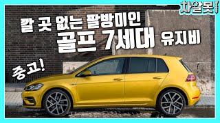 """""""유지비 요청 1위"""" 폭스바겐 중고 …"""