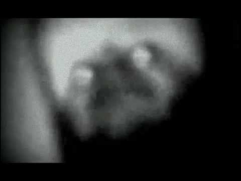 David Richard Kaup - REAL ALIEN FOOTAGE!!! - YouTube Real Alien Footage 2013