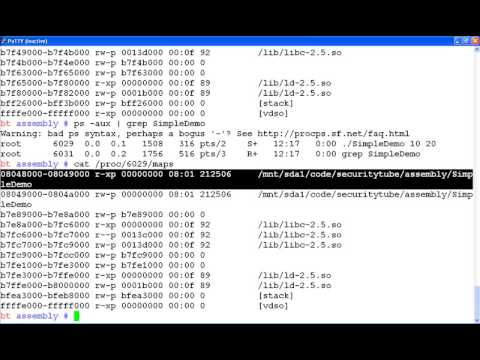 Assembly Primer for Hackers Part 2 Virtual Memory Organization Tutorial
