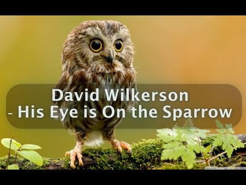 David Wilkerson - His Eye is On the Sparrow | Full Sermon