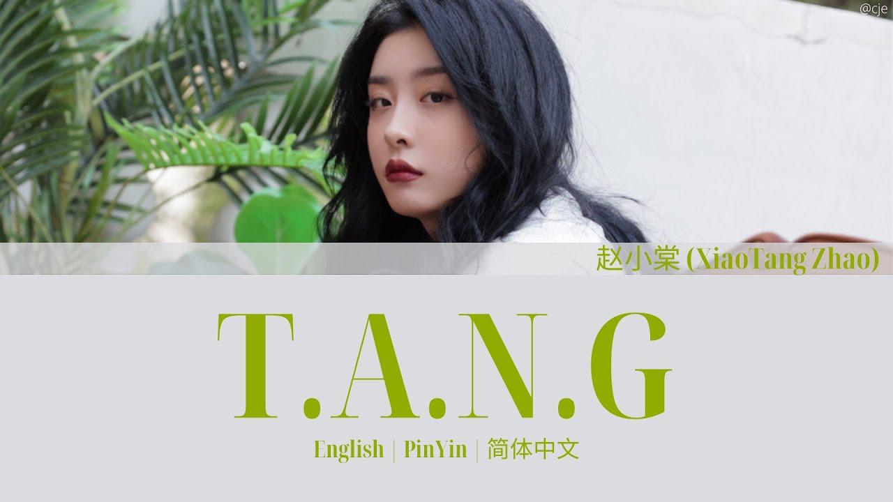 Download THE9 赵小棠 (Xiaotang Zhao) T.A.N.G 歌词/ Color Coded Lyrics(简体中文/PinYin/English)