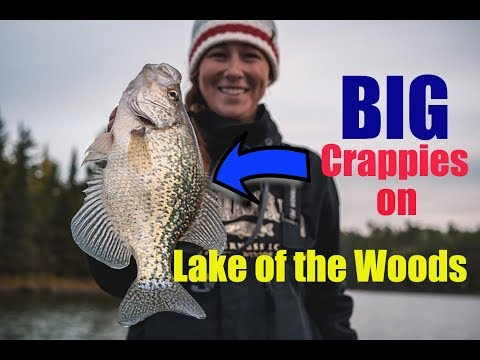 Finding Fall Crappies On Lake Of The Woods