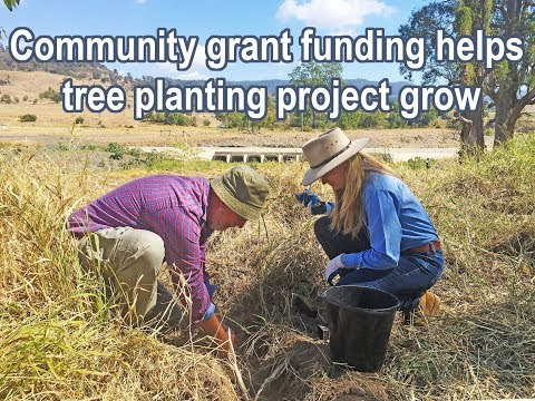 Community grant funding helps tree planting project grow