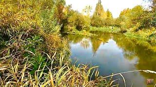 Такой рыбалки у меня ещё не было Осень на Васюгане 2 серия Рыбалка