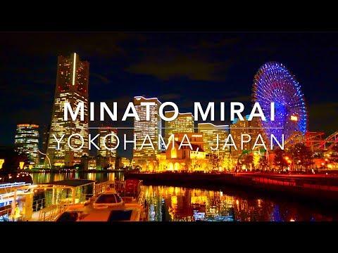 MInato Mirai Yokohama, Japan みなとみらい| Latte ラテ a dog's story
