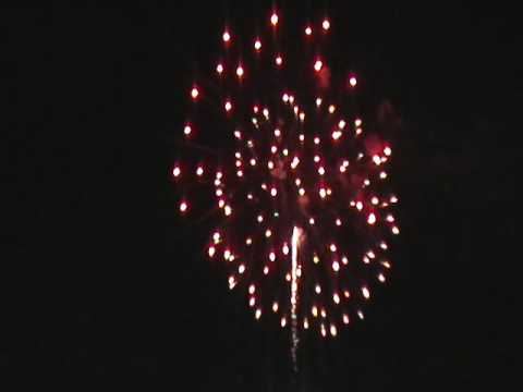 4th of July Fireworks (Savannah Sand Gnats)