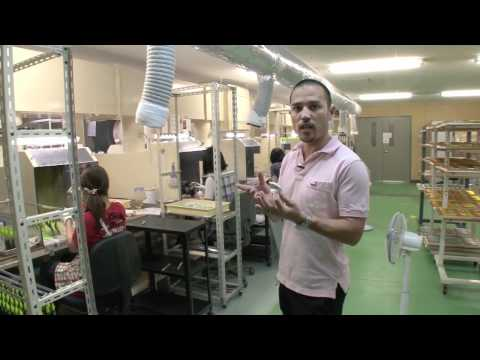 DUO`s Factory - Inside The Manufacturing Process Of Lures