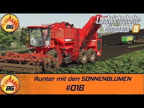 LS19 - BG FARM II #016 | Runter Mit Den SONNENBLUMEN | FS19 | Let's Play [HD]