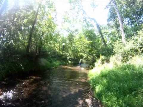 Trout Fishing Lower Saluda River Tailrace Columbia SC