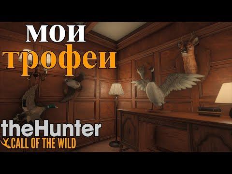 ТРОФЕЙНЫЙ ДОМ! theHunter: Call of the Wild Обзор Trophy Lodge Spring Creek Manor патч 1.33
