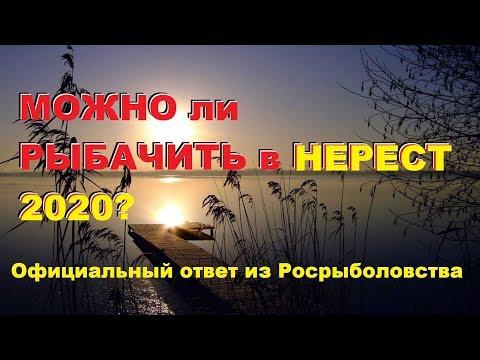"""Официальный """"ОТВЕТ"""" из Росрыболовства... Можно ли рыбачить в """"ЗАБРОДНИКАХ"""" в нерест 2020? SeMano TV"""