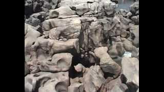 Путешествие по Гоа, Хампи и Гокарне (Travel to Goa, Hampi & Gokarna)(Небольшая видео-нарезка впечатлений от трипа весной 2011 года :) Dancing Life или похождения веселой компании :)..., 2012-05-23T13:37:39.000Z)