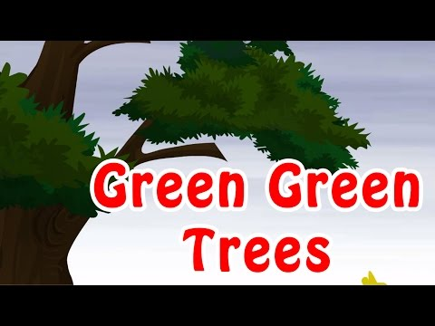 Green Green Trees  Kids Nursery Rhymes