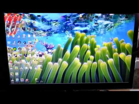 Sim Aquarium  Live Wallpaper Mode In Windows