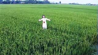 Ai Vô Xứ Nghệ - Ca sĩ Phương Thảo