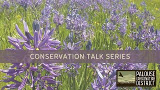 Conservation Talk Series   Native Plants in the Landscape