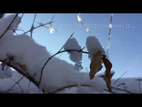 23 февраля СунБогым Ташкент/February 23 SBG church Tashkent/순복음 타슈켄트