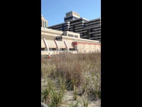 Jay Philpott-Hello Summer in Atlantic City