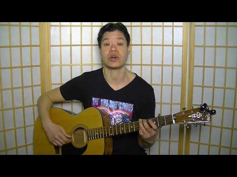 Have You Ever by Brandi Carlile – Totally Guitars Lesson Preview