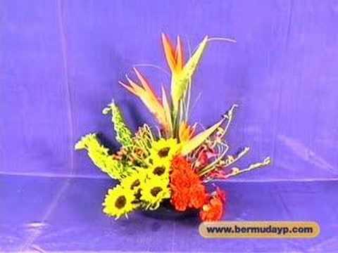 House of Flowers - Bermuda YP