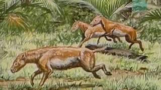 Paleoworld- Are Rhinos Dinos (Part 2)