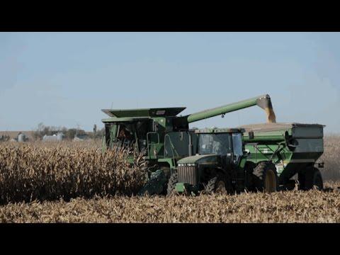 U.S. Corn Exports - Tom Sleight - May 19, 2017