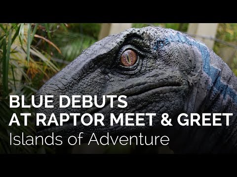 Blue from Jurassic World debuts at Universal Orlando