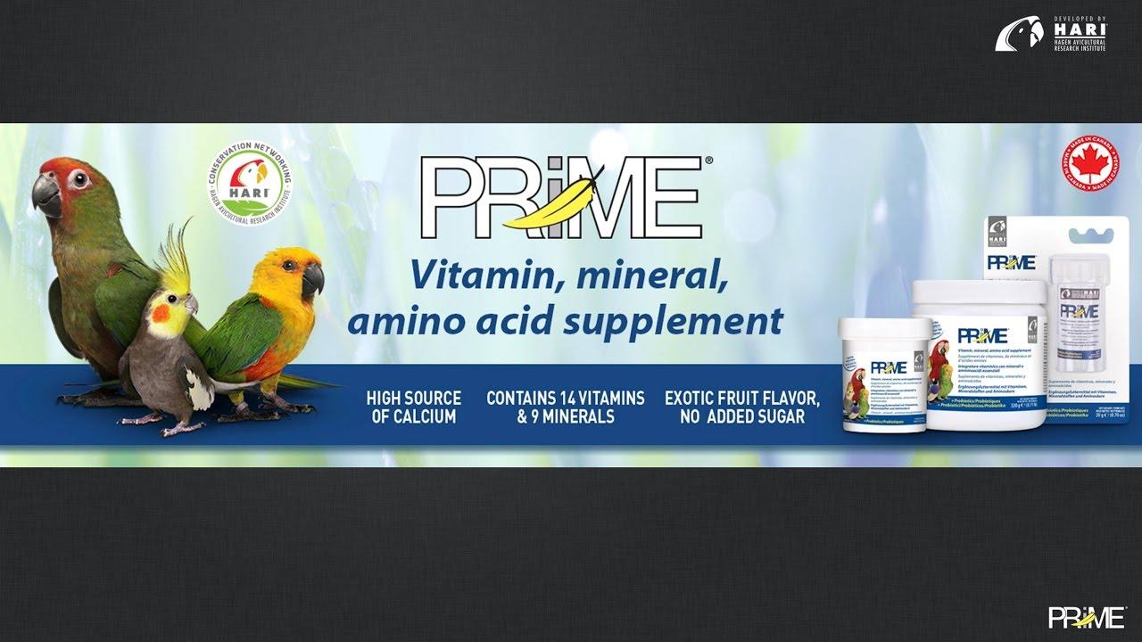 Prime Vitamin Mineral Amino Acid Supplement for Birds - Hari