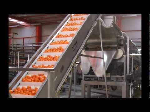 Citrus oil and juice extraction