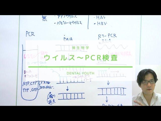 ウイルスからPCR検査まで【歯科医師国家試験】