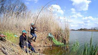 Рыбалка на карася Осторожно клещи