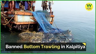 Banned Bottom Trawling in Kalpitiya thumbnail