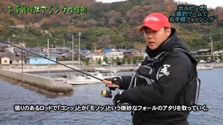 林健太郎:お手軽堤防アジング攻略術 thumbnail