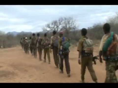 Oromo Liberation Front Attacked TPLF Police Post In Moyale