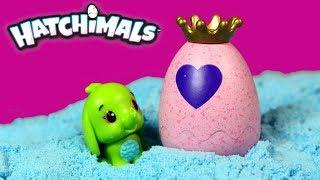 Hatchimals • Wielka przygoda Hatchimals • bajka po polsku