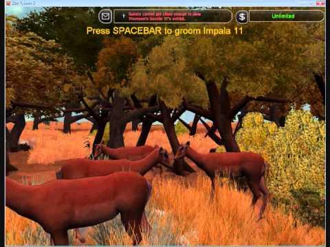 Serengeti  Gacelas  Al límite de la supervivencia
