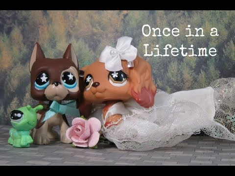 LPS: Once in A Lifetime {Short Film}