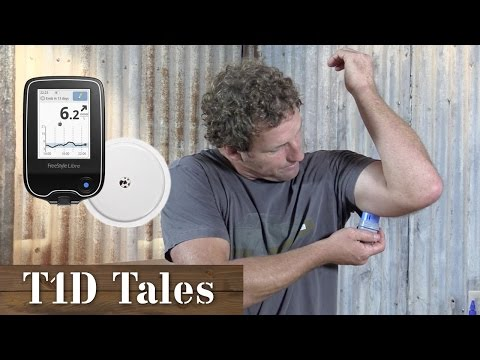 freestyle-glucose-monitoring-system-review-|-tid-tales