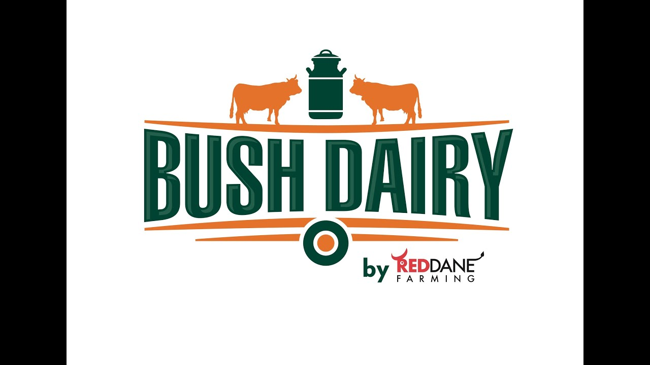 The Intensive Bush Dairy