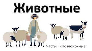 10.2 Животные - позвоночные (5 класс) - введение в Биологию