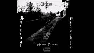 AURORA DISEASE - Urban Suicidal Melancholy (DSBM)