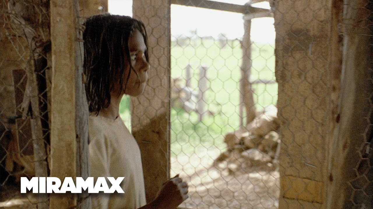 rabbit proof fence thieving my eggs hd miramax rabbit proof fence thieving my eggs hd miramax