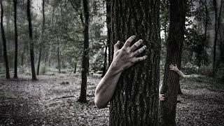Похождение Евгения в лесу. Музыка из фильма Телемертвецы