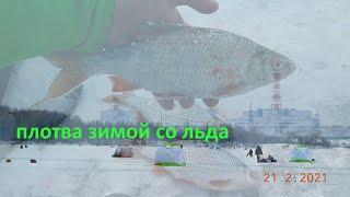 крупная плотва со льда -  зимняя рыбалка в феврале 2021 года