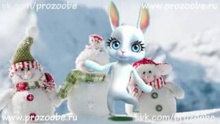 Любимая Подруга, С Новым Годом! Поздравления от ZOOBE Зайки Домашней Хозяйки
