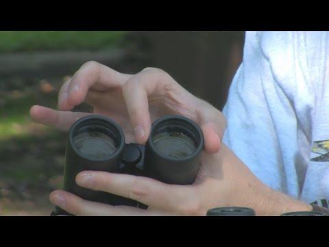 Understanding Binoculars: Aperture