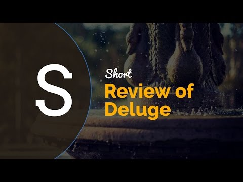 Short Review of Deluge