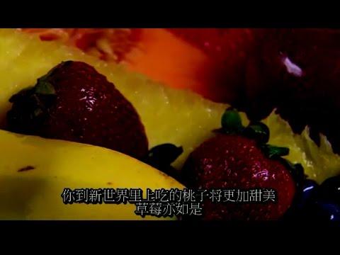 (20)新天新地The New Earth--启示录(中文字幕)【完结】