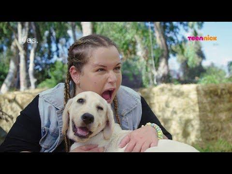 בית הכלבים 3: הרגעים הגדולים - גור תמורת צמידי סוכריות   טין ניק
